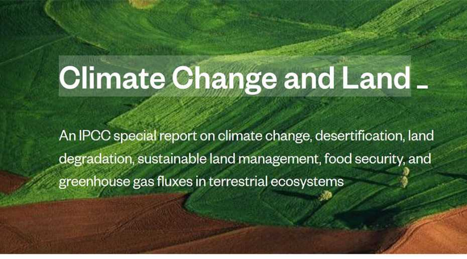 In the media: IPCC special report Climate Change and Land